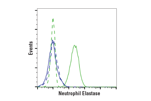 Monoclonal Antibody Negative Regulation of Chemotaxis