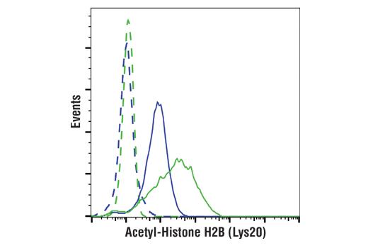 Monoclonal Antibody - Acetyl-Histone H2B (Lys20) (D7O9W) Rabbit mAb (PE Conjugate), UniProt ID P33778, Entrez ID 3018 #49528