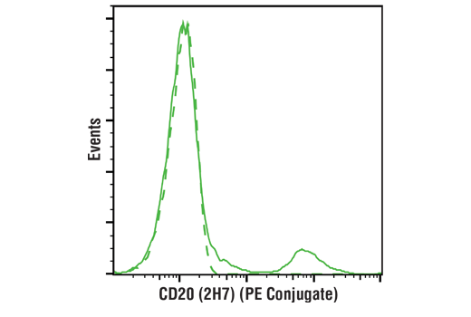Monoclonal Antibody - CD20 (2H7) Mouse mAb (PE Conjugate) - Flow Cytometry, UniProt ID P11836, Entrez ID 931 #26137, Cd20