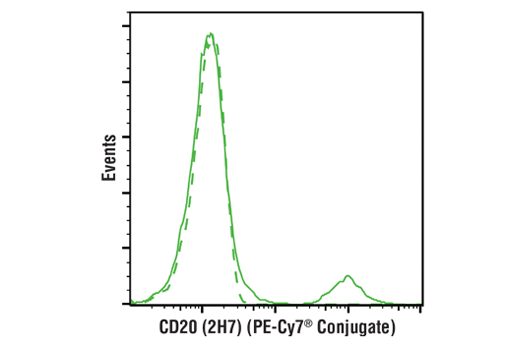 Monoclonal Antibody - CD20 (2H7) Mouse mAb (PE-Cy7® Conjugate), UniProt ID P11836, Entrez ID 931 #50665 - Primary Antibody Conjugates