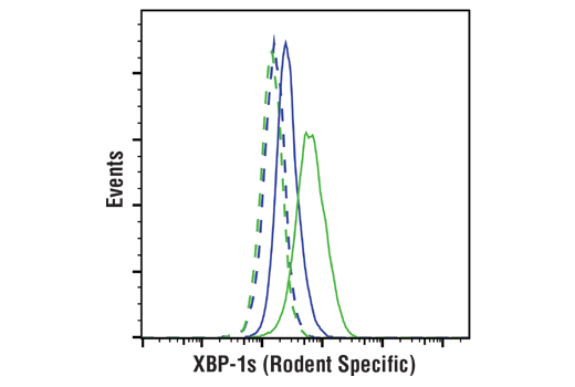 Flow Cytometry Image 1: XBP-1s (E8Y5F) Rabbit mAb (Rodent Specific)
