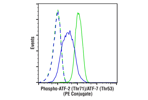 Flow Cytometry Image 1: Phospho-ATF-2 (Thr71)/ATF-7 (Thr53) (A8J7P) Rabbit mAb (PE Conjugate)