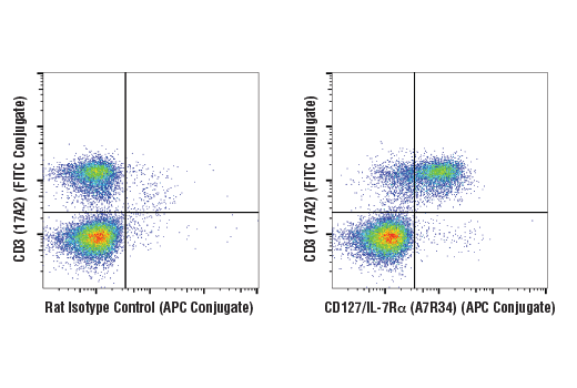 Monoclonal Antibody Flow Cytometry Regulation of Cell Size