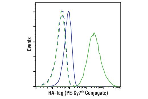Monoclonal Antibody - HA-Tag (C29F4) Rabbit mAb (PE-Cy7® Conjugate) - 100 µl #55545