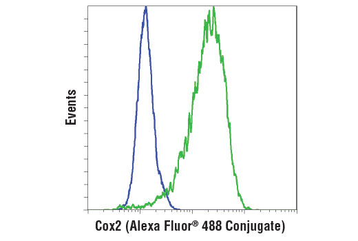 Flow cytometric analysis of Raw 264.7 cells, untreated (blue) or LPS-treated (1 μg/ml, 24 hr; green), using Cox2 (D5H5) XP<sup>®</sup> Rabbit mAb (Alexa Fluor<sup>®</sup> 488 Conjugate).