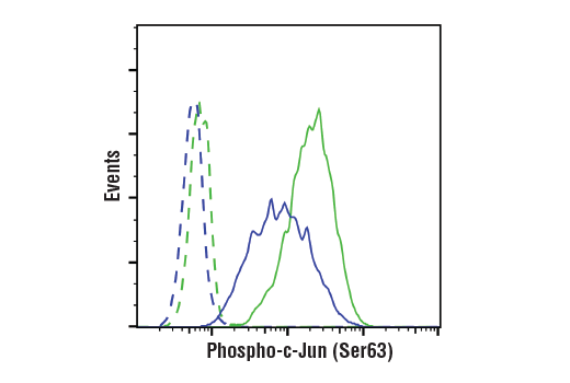 Flow Cytometry Image 1: Phospho-c-Jun (Ser63) (E6I7P) XP® Rabbit mAb