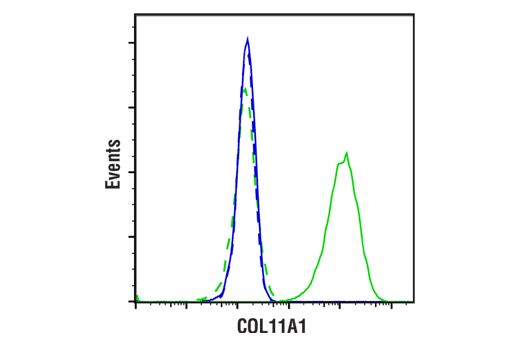 Flow Cytometry Image 1: COL11A1 (E6X3Y) Rabbit mAb