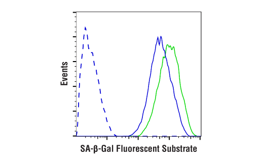 Flow Cytometry Image 1: Senescence β-Galactosidase Activity Assay Kit (Fluorescence, Flow Cytometry)