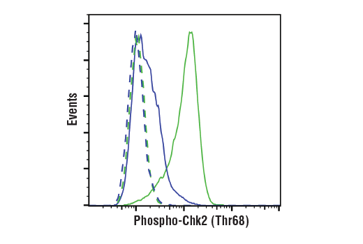 Flow Cytometry Image 1: Phospho-Chk2 (Thr68) (E8Q1A) Rabbit mAb