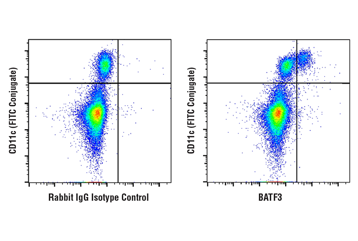 Flow Cytometry Image 1: BATF3 (E3K5H) Rabbit mAb
