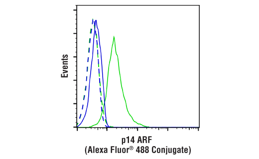 Flow Cytometry Image 1: p14 ARF (E3X6D) Rabbit mAb (Alexa Fluor® 488 Conjugate)