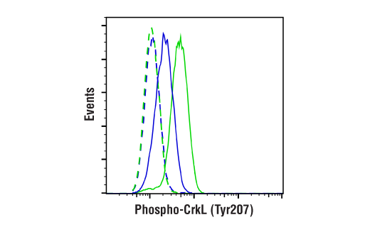 Flow Cytometry Image 1: Phospho-CrkL (Tyr207) (E9A1U) XP® Rabbit mAb