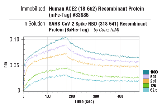 Image 1: SARS-CoV-2 Spike RBD (318-541) Recombinant Protein (8xHis-Tag)