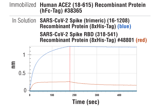 Image 4: SARS-CoV-2 Spike (trimeric) (16-1208) Recombinant Protein (8xHis-Tag)