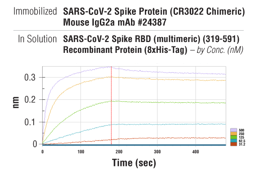 Image 1: SARS-CoV-2 Spike RBD (multimeric) (319-591) Recombinant Protein (8xHis-Tag)
