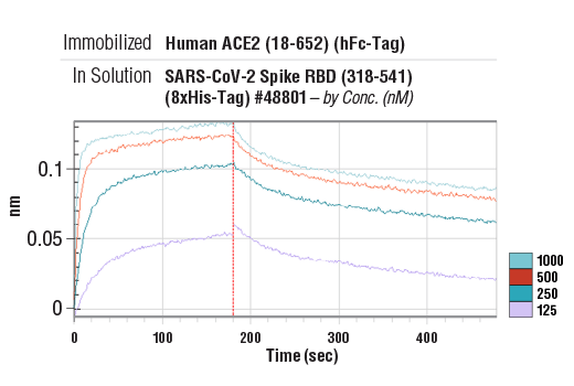 Image 3: Human ACE2 (18-652) Recombinant Protein (hFc-Tag)