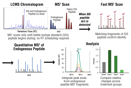 Image 2: SignalScan™ Peptide Mix (SARS-CoV-2)