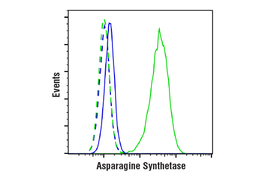 Flow Cytometry Image 1: Asparagine Synthetase (E6C2C) XP® Rabbit mAb