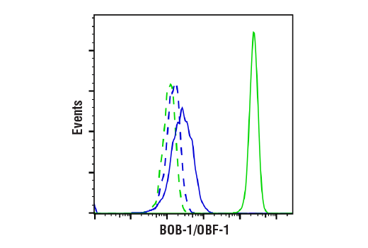 Flow Cytometry Image 1: BOB-1/OBF-1 (E5K1D) Rabbit mAb
