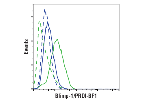 Flow cytometric analysis of HeLa (blue) and Karpas620 cells (green) using Blimp-1/PRDI-BF1 (C14A4) Rabbit mAb (solid lines) or a concentration-matched Rabbit (DA1E) mAb IgG XP® Isotype Control #3900 (dashed lines). Anti-rabbit IgG (H+L), F(ab')<sup>2</sup> Fragment (Alexa Fluor® 488 Conjugate) #4412 was used as a secondary antibody.