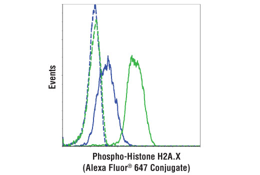 Flow cytometric analysis of Jurkat cells, untreated (blue) or treated with UV (100 mj, 2 hr recovery; green) using Phospho-Histone H2A.X (Ser139) (20E3) Rabbit mAb (Alexa Fluor® 647 Conjugate) (solid lines) or concentration-matched</p><p>Rabbit (DA1E) mAb IgG XP<sup>®</sup> Isotype Control (Alexa Fluor<sup>®</sup> 647 Conjugate) #2985 (dashed lines).