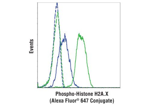 Monoclonal Antibody - Phospho-Histone H2A.X (Ser139) (20E3) Rabbit mAb (Alexa Fluor® 647 Conjugate), UniProt ID P16104, Entrez ID 3014 #9720, Chromatin Regulation / Acetylation