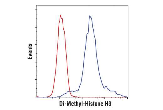 Image 1: Di-Methyl-Histone H3 Antibody Sampler Kit