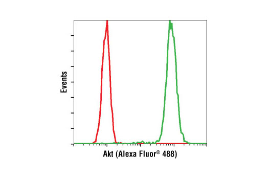 Flow cytometric analysis of untreated Jurkat cells (green) using Akt (5G3) Mouse mAb (Alexa Fluor<sup>®</sup> 488 Conjugate) compared to a nonspecific negative control antibody (red).