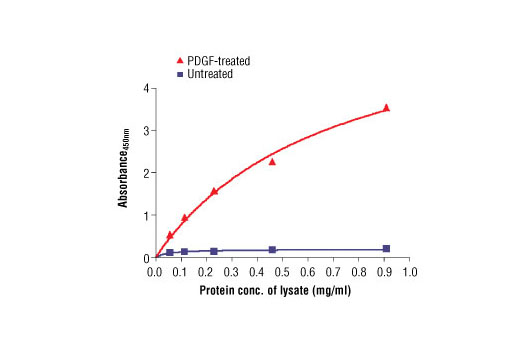Figure 2. The relationship between protein concentration of untreated or PDGF-treated MG-63 cell lysates and the absorbance at 450 nm is shown. Cells were serum starved overnight and then treated with 50 ng/ml PDGF for 7 min. at 37<sup>o</sup>C.