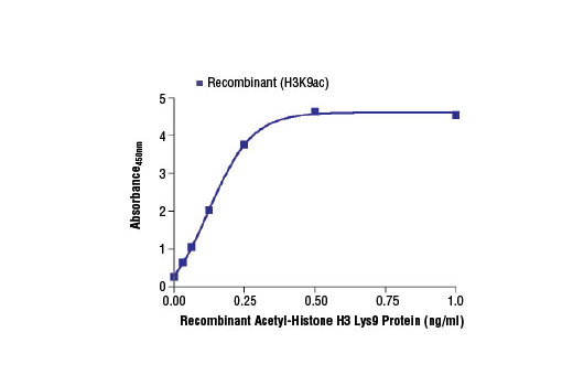Image 2: PathScan® Acetyl-Histone H3 (Lys9) Sandwich ELISA Kit
