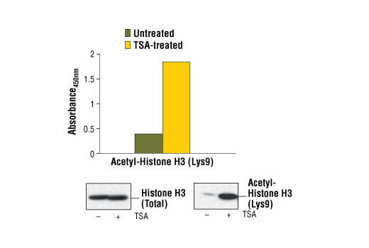 Image 1: PathScan® Acetyl-Histone H3 (Lys9) Sandwich ELISA Kit