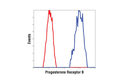 Flow cytometric analysis of T-47D cells using Progesterone Receptor B Receptor (C1A2) Rabbit mAb (blue) compared to a nonspecific negative control antibody (red).