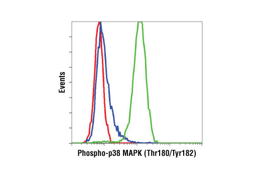Flow cytometric analysis of Jurkat cells, untreated (blue) or anisomycin-treated (green), using Phospho-p38 MAPK (Thr180/Tyr182) (D3F9) XP<sup>®</sup> Rabbit mAb compared to a nonspecific negative control antibody (red).