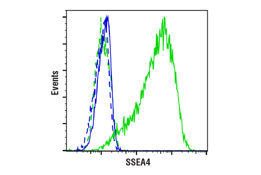 Flow Cytometry Image 1: SSEA4 (MC813) Mouse mAb