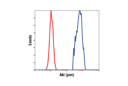 Flow cytometric analysis of untreated Jurkat cells using Akt (pan) (40D4) Mouse mAb (blue) compared to a nonspecific negative control antibody (red).
