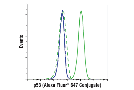 Flow cytometric analysis of K562 cells (blue) and HT-29 cells (green) using p53 (1C12) Mouse mAb (Alexa Fluor® 647 Conjugate) (solid lines) or a concentration-matched Mouse (MOPC-21) mAb IgG1 Isotype Control (Alexa Fluor<sup>®</sup> 647 Conjugate) #4843 (dashed lines).