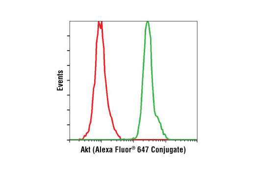 Flow cytometric analysis of untreated Jurkat cells (green) using Akt (5G3) Mouse mAb (Alexa Fluor<sup>®</sup> 647 Conjugate) compared to a nonspecific negative control antibody (red).