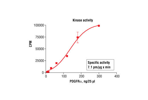 Kinase Assay - Radiometric Image 1