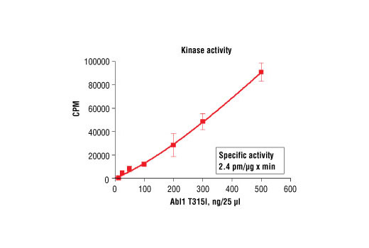Image 5: HTScan® Abl1 T315I Kinase Assay Kit