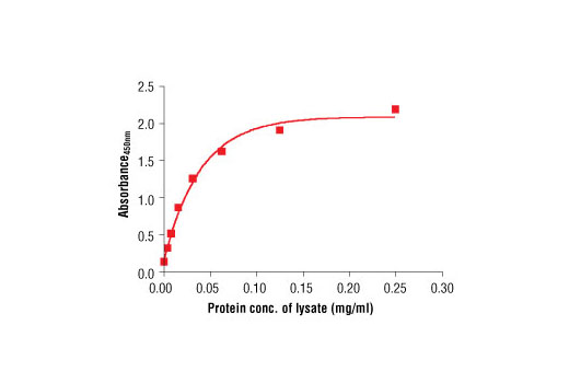 Figure 2. The relationship between the protein concentration of the lysate from HeLa cells and the absorbance at 450 nm is shown.