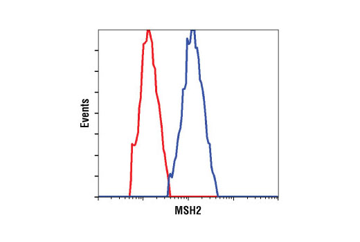 Flow cytometric analysis of HeLa cells using MSH2 (D24B5) XP<sup>®</sup> Rabbit mAb (blue) compared to a nonspecific negative control antibody (red).