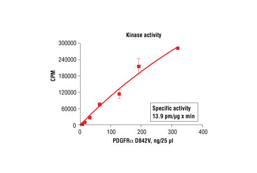 Image 5: HTScan® PDGF Receptor α D842V Kinase Assay Kit