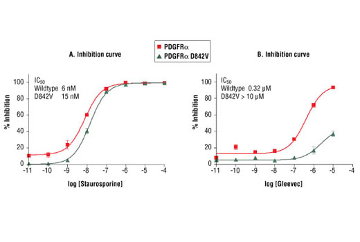 Image 2: HTScan® PDGF Receptor α D842V Kinase Assay Kit