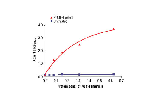 Figure 3: The relationship between protein concentration of lysates from untreated or PDGF-treated NIH/3T3 cells and the absorbance at 450 nm is shown. After starvation, NIH/3T3 cells (85% confluence) were treated with PDGF #9909 (50 ng/ml) for 10 min at 37ºC and then lysed.