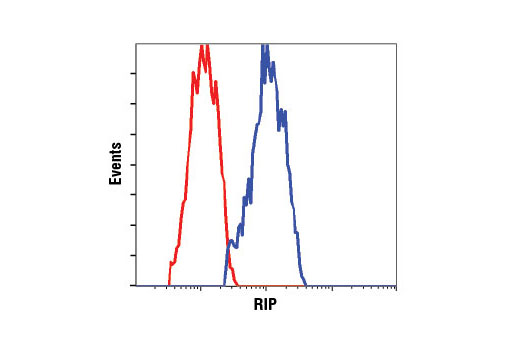 Flow cytometric analysis of MCF7 cells using RIP (D94C12) XP<sup>®</sup> Rabbit mAb (blue) compared to Rabbit (DA1E) mAb IgG XP<sup>®</sup> Isotype Control #3900 (red).