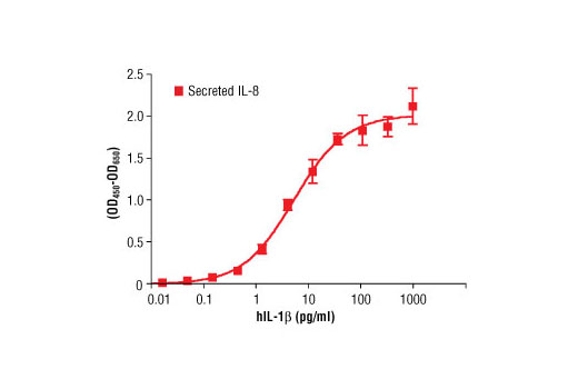 The production of IL-8 by primary human fibroblasts cultured with increasing concentrations of human IL-1β was assessed. Media from cells incubated with IL-1β for 24 hours was collected and assayed for IL-8 by ELISA and the OD<sub>450</sub>-OD<sub>650</sub> was determined.