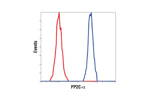 Flow cytometric analysis of HeLa cells using PP2C-α (D18C10) XP<sup>®</sup> Rabbit mAb (blue) compared to a nonspecific negative control antibody (red).