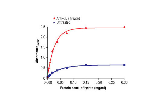 Figure 2. The relationship between lysate protein concentration from untreated and anti-CD3-treated Jurkat cells and the absorbance at 450 nm is shown.