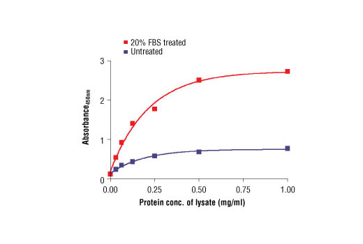 Figure 2. The relationship between the protein concentration of lysates from untreated and 20% FBS-treated HeLa cells and the absorbance at 450 nm using the PathScan<sup>®</sup> Phospho-eIF4E (Ser209) Sandwich ELISA Kit is shown.