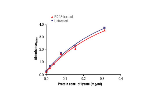 Figure 3: The relationship between protein concentration of lysates from untreated and PDGF-treated NIH/3T3 cells and the absorbance at 450 nm is shown. After starvation, NIH/3T3 cells (85% confluence) were treated with PDGF #9909 (50 ng/ml) for 10 min at 37ºC and then lysed.
